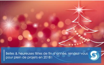 Belle fête de fin d'année! Et vous, quels sont vos projets pour 2018?
